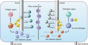 cum se prepara apa alcalina ZEN 1